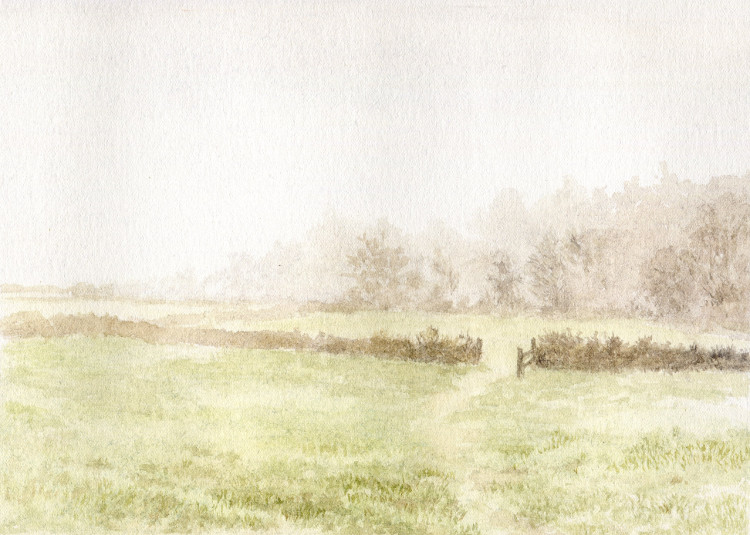 Fields in Mist, Newton Hall