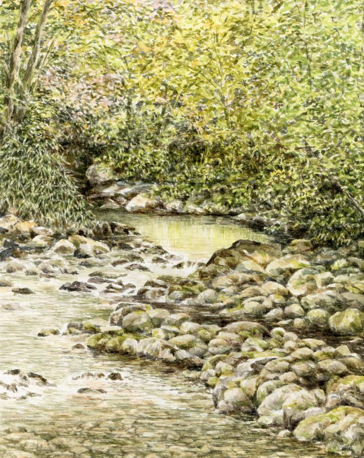 Bent Creek, NC Arboretum